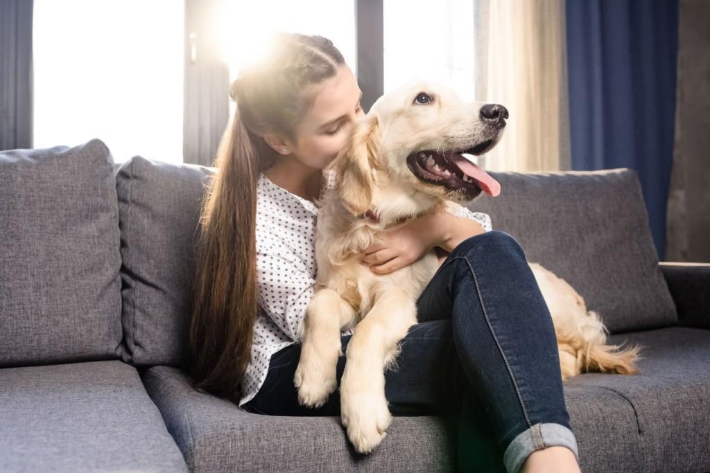 pets apartamento